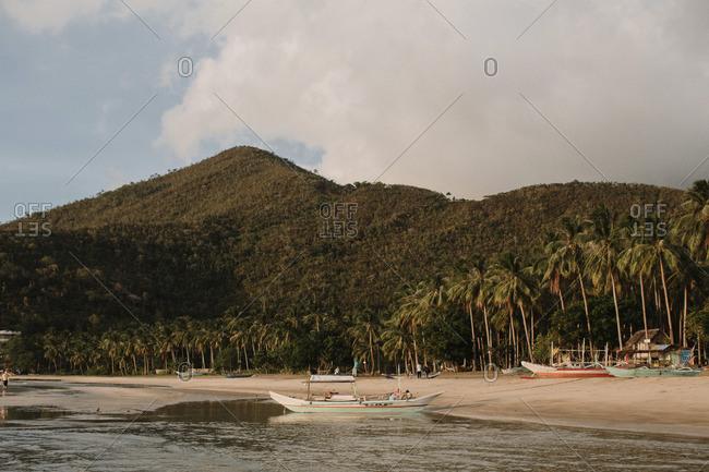 Boats along a tropical shore