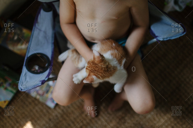 High angle view of child holding kitten