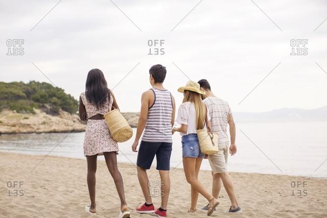 Rear view of multi-ethnic friends walking on beach