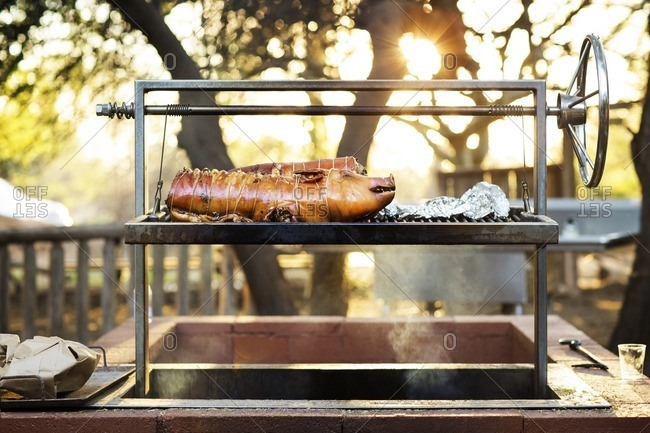 Pork on barbecue grill
