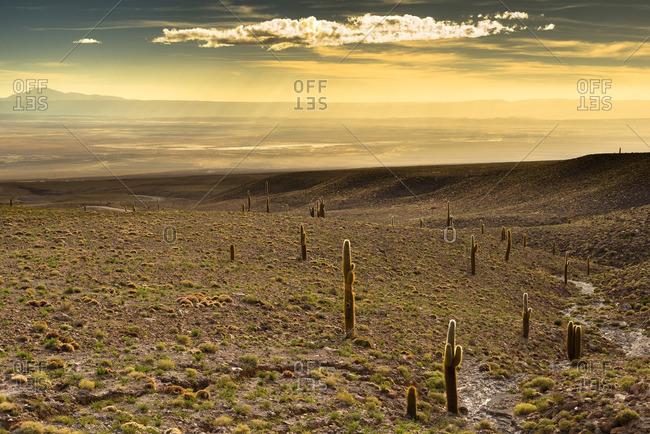 Overview of Atacama Salt Lake, Atacama Desert from the High Andean Plateau, Chile