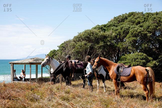 Horseback riders stopping by a gazebo, Pakiri Beach, Auckland, New Zealand