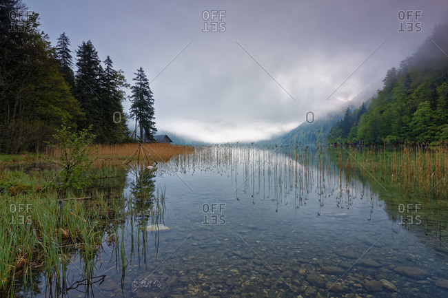 Leopoldsteiner lake in the fog