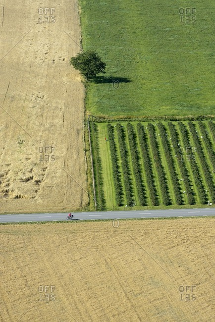 Aerial view of bicyclist on country road between fields