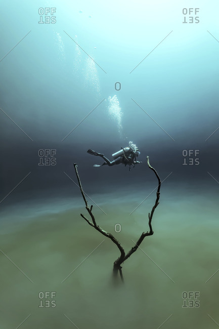 Scuba diver diving in a cenote above a sulfur cloud in the Yucatan Peninsula, Mexico