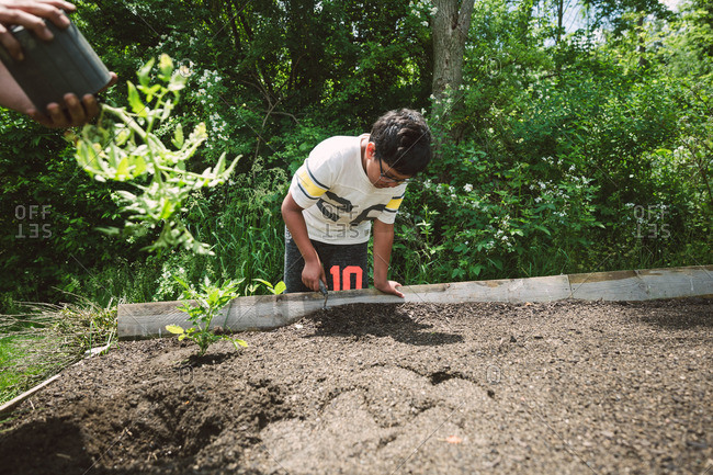 Boy digging with a spade in a raised bed garden
