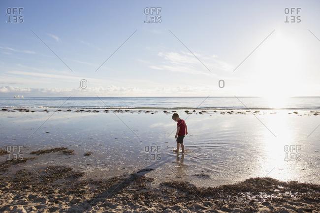 Boy wading through a tidal pool at the beach
