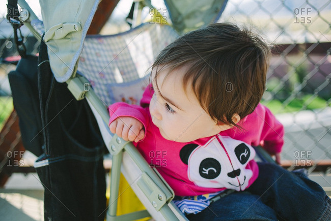 Young child sitting in a stroller