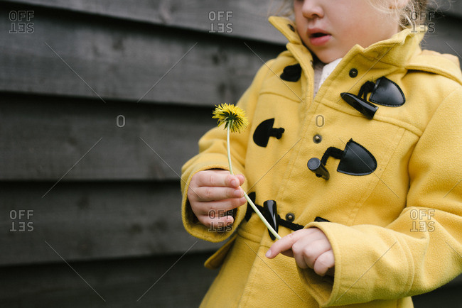 Girl in coat holding dandelion