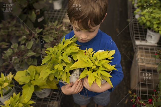 Boy holding two potted plants at a nursery