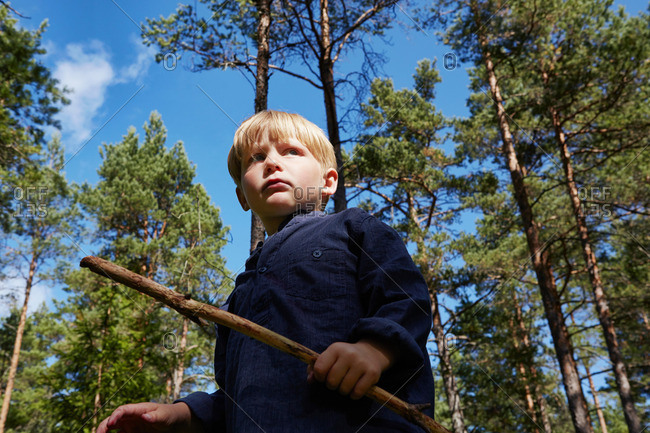 Boy standing in forest holding stick