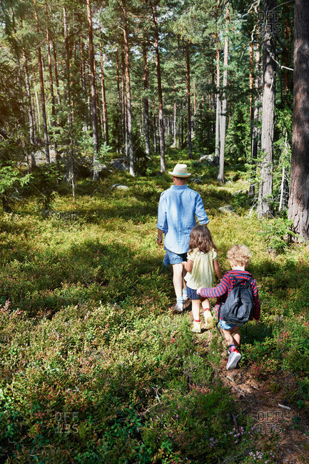 Father and daughters walking through forest