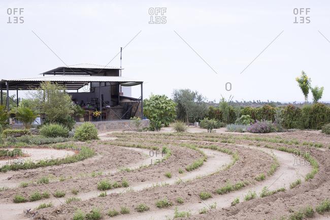 Hierbabuena Restaurant and garden in El Pescadero, Mexico