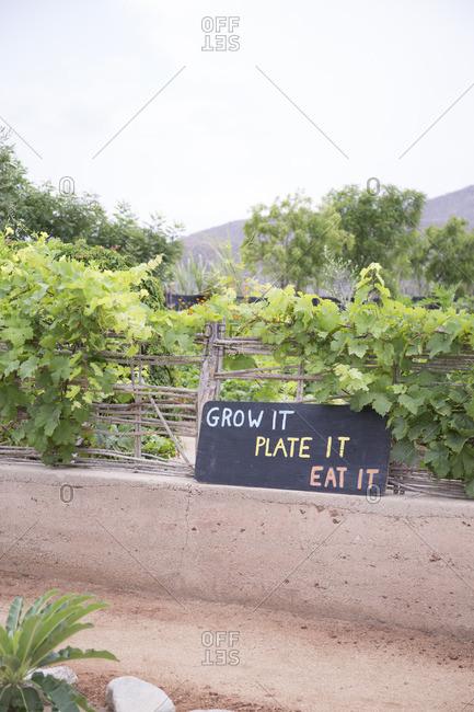 Grow it, plate it, eat it sign in El Pescadero, Mexico