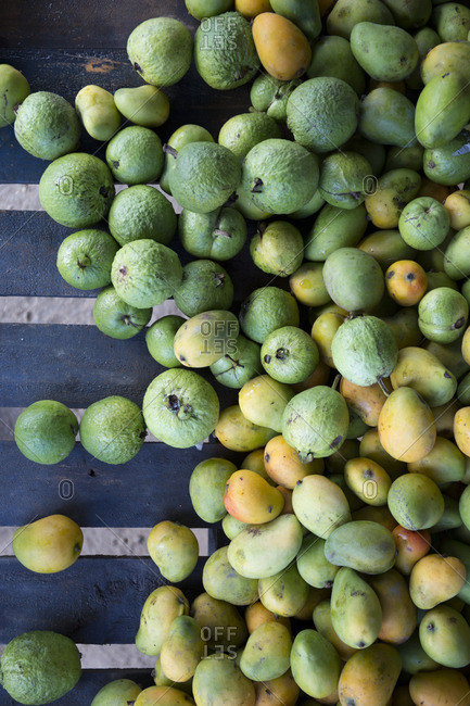 Fresh picked mangos and guavas on a table