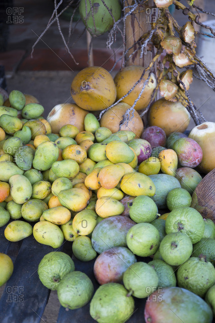Pile of fresh picked mangos and guavas