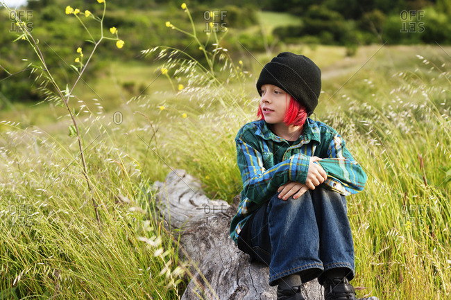 Thoughtful boy hugging knees while sitting on log at field