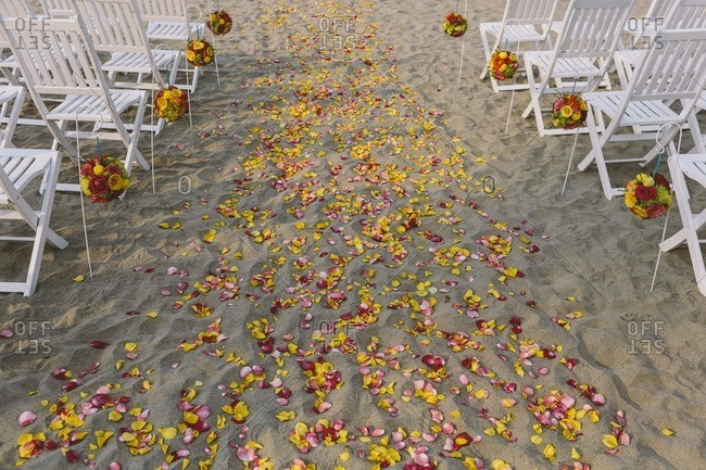 Petals on beach for wedding