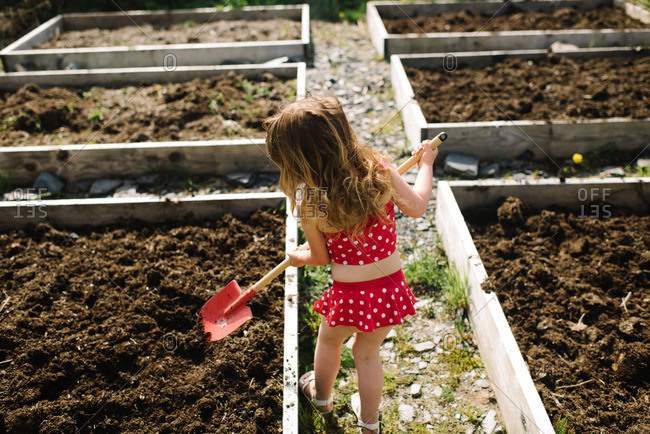Young girl in a polka dot bathing suit digging in a raised bed garden