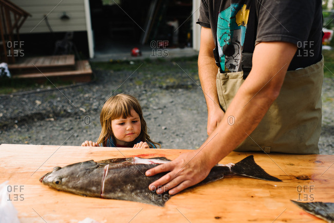 Girl watching her father clean a freshly caught fish