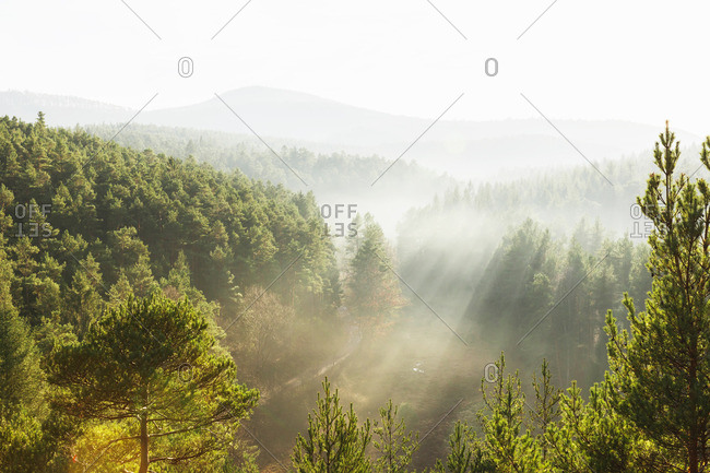 Germany- Rhineland-Palatinate- Palatinate Forest-North Vosges Biosphere Reserve on a hazy day