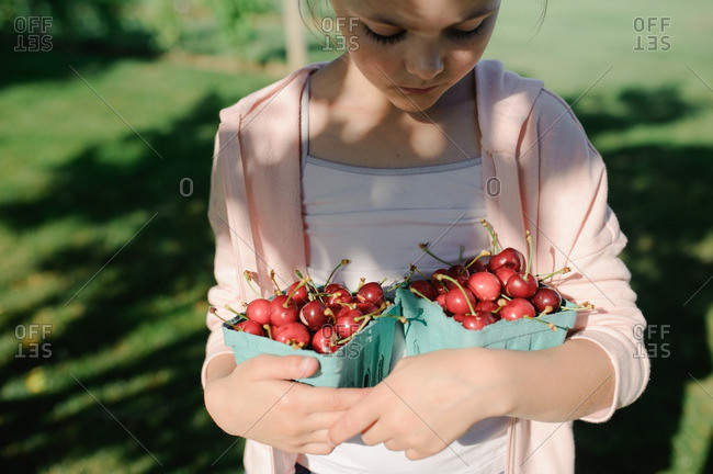 Girl with containers of freshly picked cherries