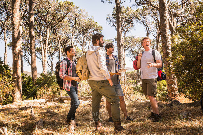 Four men planning with hiking map in forest