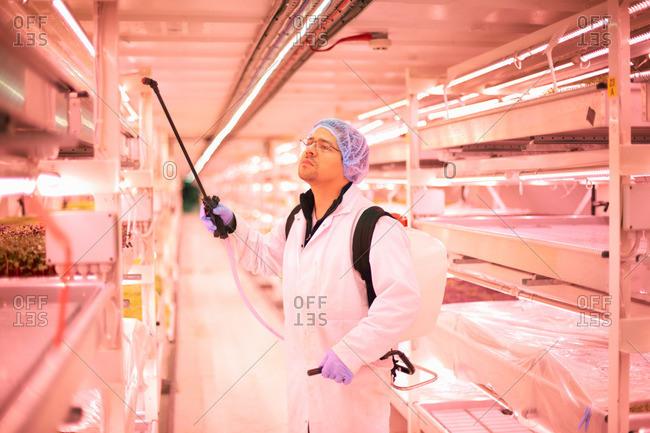Man spraying shelves of micro greens in underground tunnel nursery