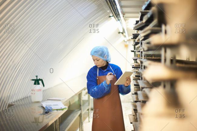Female worker updating digital tablet in underground tunnel seed tray nursery