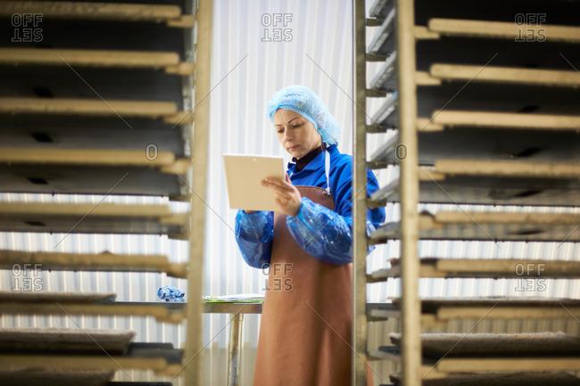 Female worker using digital tablet in underground tunnel seed tray nursery