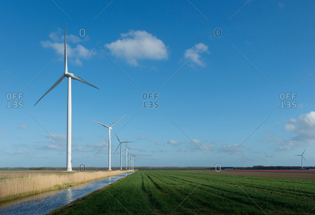 Wind turbines in field on farm
