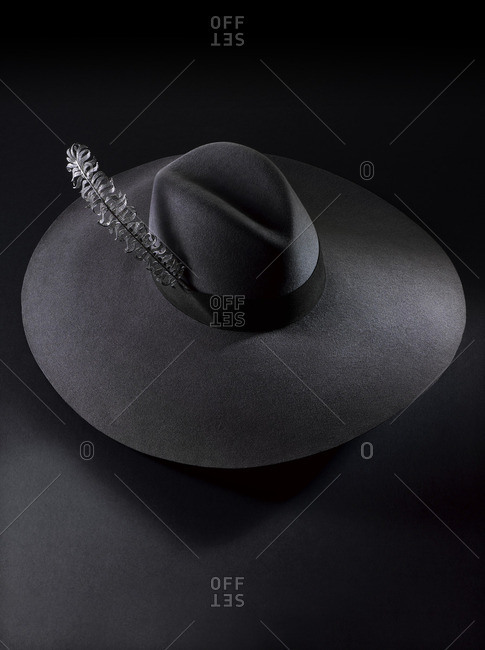 Black felt hat with feather pin