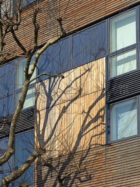 Window facade of Bermondsey , London