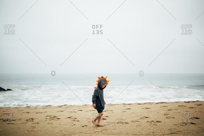 Boy in dinosaur hoodie walking on the sand