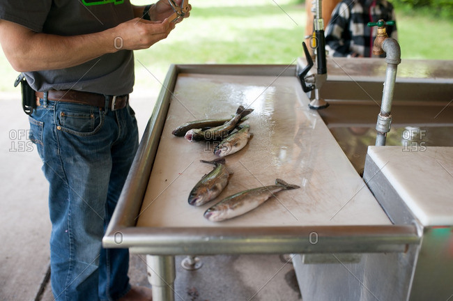 Cleaning fish at outdoor counter