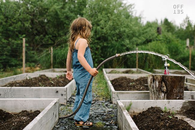 Young girl in overalls watering garden with hose