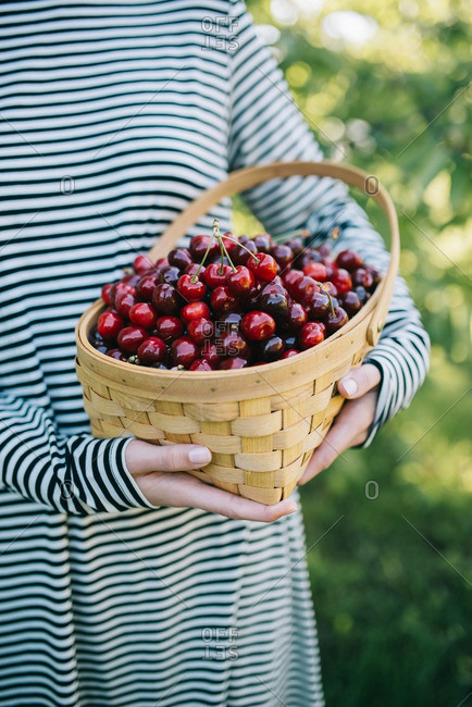 Woman in striped dress holding basket of cherries