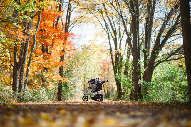 Baby carriage on a path in the woods in autumn