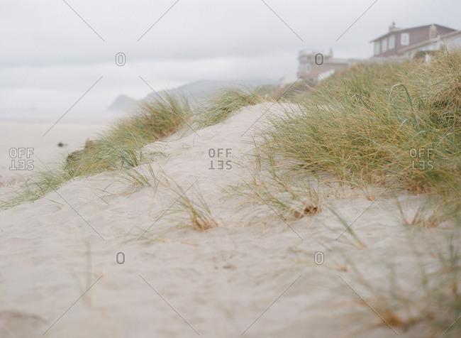 Close up of a sandy shoreline