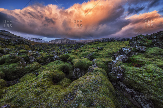 Moss covered lava flow at sunrise on the Snaefellsness Peninsula