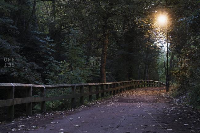 Walking path illuminated by a lamp post at dusk