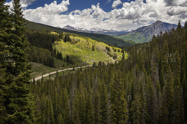 Mountain road in the middle area with a spruce forest in the foreground and aspen groves and snowcapped mountains in the background