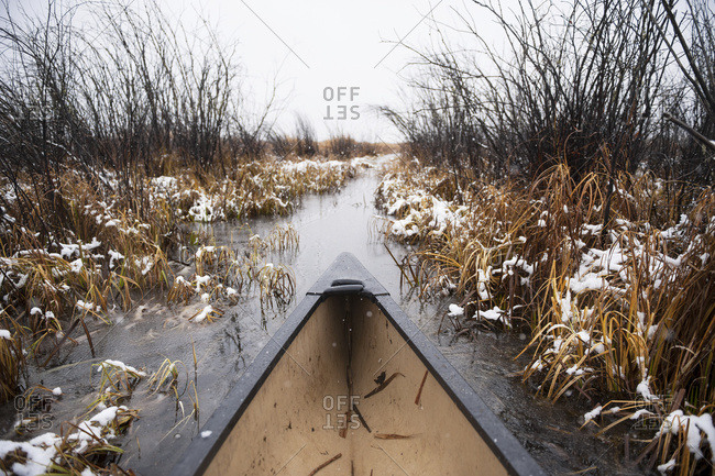 The bow of a canoe paddling through tall reeds in winter mist