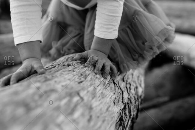 Girl crawling on tree trunk