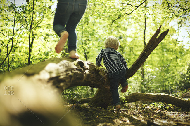 Two children playing in forest