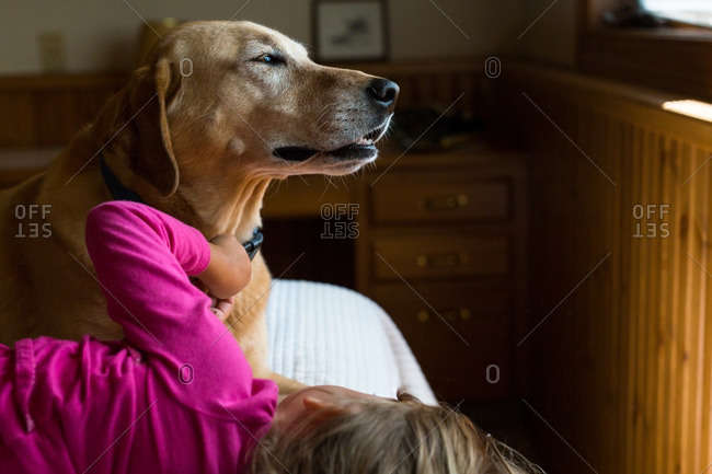 Child petting content dog on bed