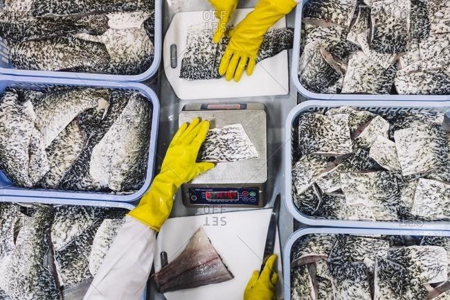 Preparing fish for packaging