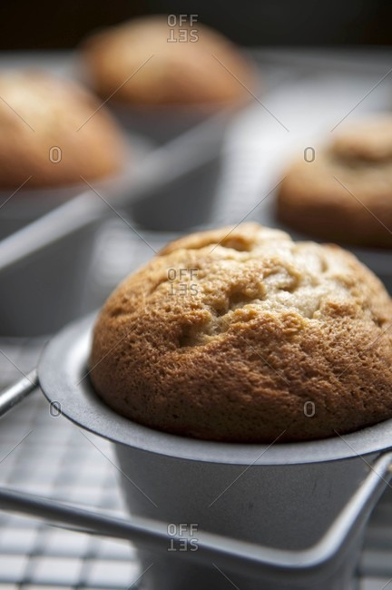 Muffins in a baking tray