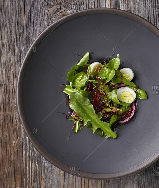 Dandelion salad with beetroot sprouts, red onions and boiled quail eggs