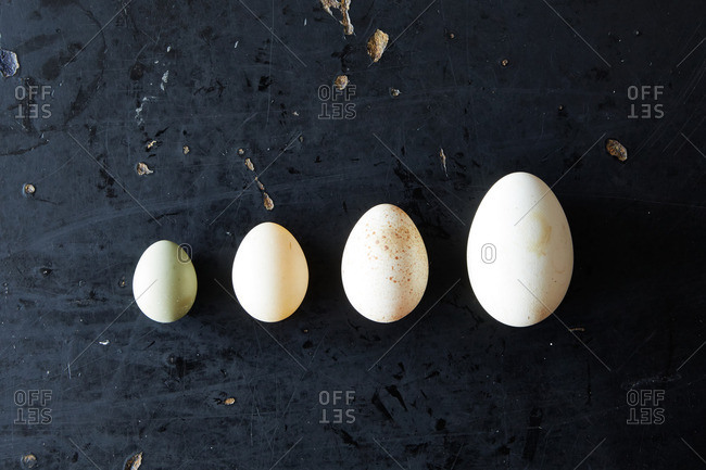 Four eggs ordered by size